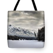 Settled Chill Tote Bag