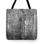 Seven Days Of Sunday Tote Bag