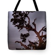 Seven Forty Pm Tote Bag