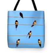 Seven Swallows Tote Bag