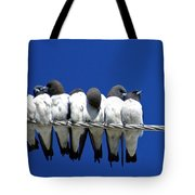 Seven Swallows Sitting Tote Bag