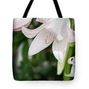Sexual Flower Tote Bag