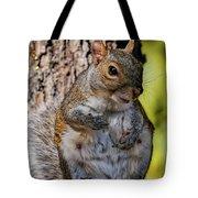 Sexy Squirrel Tote Bag