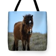 Shackleford Banks Pony Tote Bag