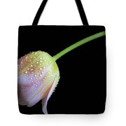 Shade Tulip Tote Bag by Tracy Hall