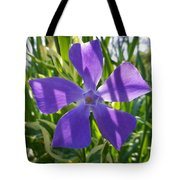 Shaded Greater Periwinkle Tote Bag