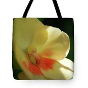 Shaded Yellow Orchid Tote Bag