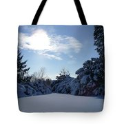 Shades Of Blue In Winter Tote Bag