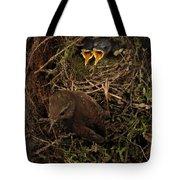 Shades Of Brown Tote Bag