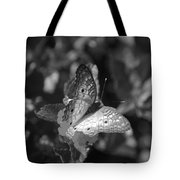 Shades Of Flight Tote Bag