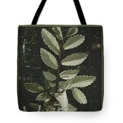 Shades Of Green Tote Bag