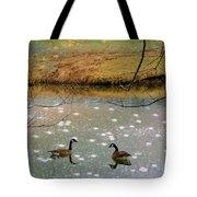 Shades Of Seasons Past Tote Bag by Jan Amiss Photography