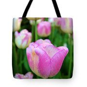 Shades Of Violet Tote Bag