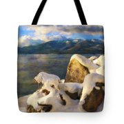 Shadow And Snow Tote Bag