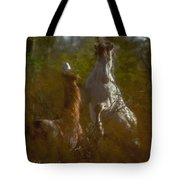 Shadow Fighting Tote Bag