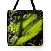 Shadow On A Ruffled Fan Palm Tote Bag