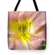 Shadow On The Petals  Tote Bag