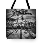 Shadow Waltz Tote Bag by Evelina Kremsdorf