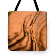 Shadowing Time Tote Bag