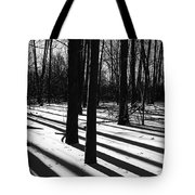 Shadows And Tracks Tote Bag
