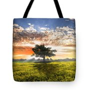 Shadows At Sunset After The Rain Tote Bag