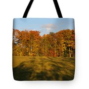 Shadows Bow Tote Bag