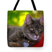 Shadow's Glamour Shot Tote Bag