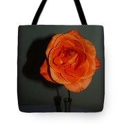 Shadows Of A Peach Rose Tote Bag
