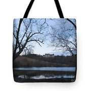 Shadows Of An Estate Home Tote Bag