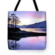 Shadows Of Furry Creek Tote Bag