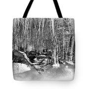 Shadows Of Winter Tote Bag