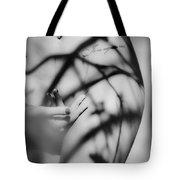 Shadows Play On Woman Body Tote Bag