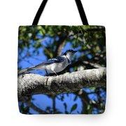 Shadowy Blue Jay Tote Bag