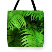 Shadowy Fern Tote Bag