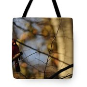 Shadowy Figure Tote Bag
