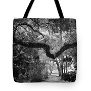Shadowy Pathway Tote Bag