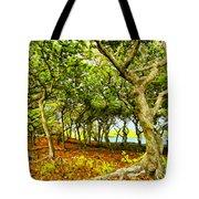Shady Grove At Wai'anapanapa Tote Bag