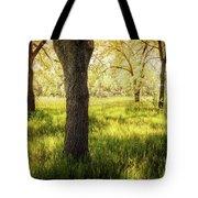 Shady Grove Tote Bag
