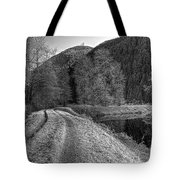 Shady Trail Tonemapped Tote Bag