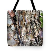 River Birch Tote Bag