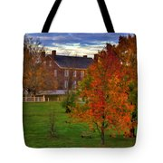 Shaker Lake 9 Tote Bag
