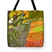 Shaker Stone Fence 3 Tote Bag