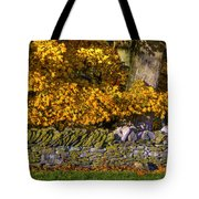 Shaker Stone Fence 4 Tote Bag