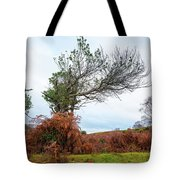 Shapes Of A Nature Tote Bag