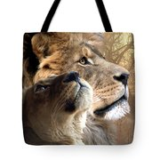 Sharing The Vision Tote Bag by Bill Stephens