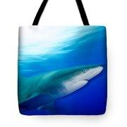 Shark In Rapid Motion Tote Bag