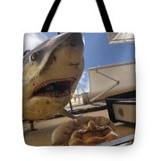 Shark On The Wall Tote Bag