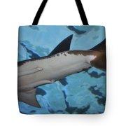 Shark Tail Tote Bag