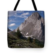 Shark Tooth Mountain Tote Bag