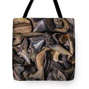 Sharks Teeth 8 Tote Bag
